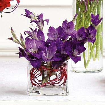 Miniature Gladiolus Arrangement